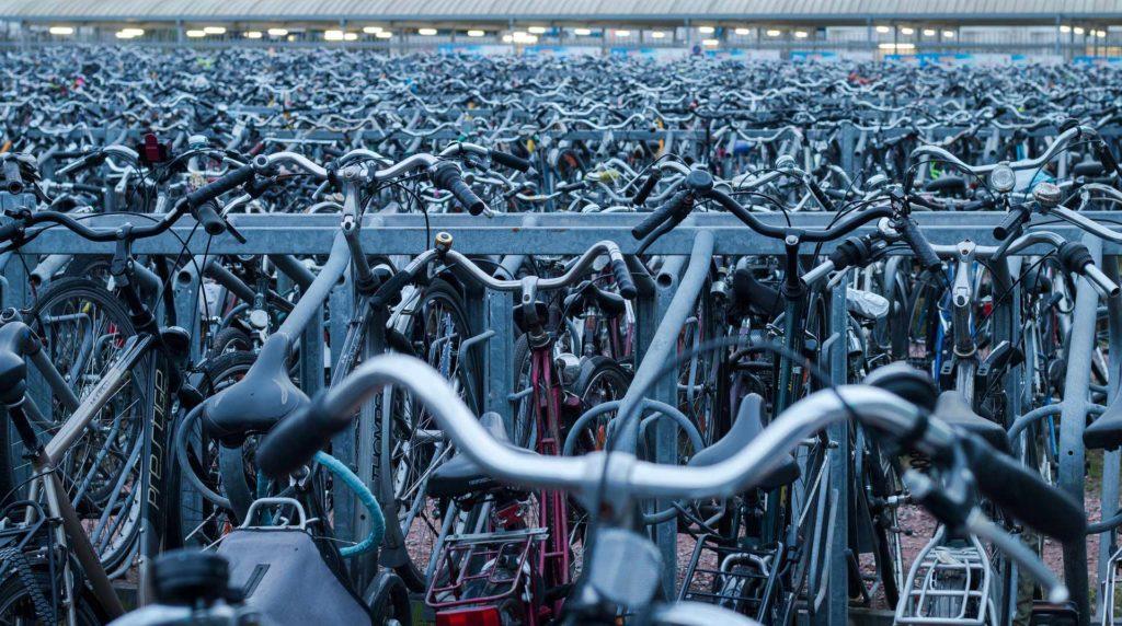 Qualitativ hochwertige Fahrradtraeger von Thule