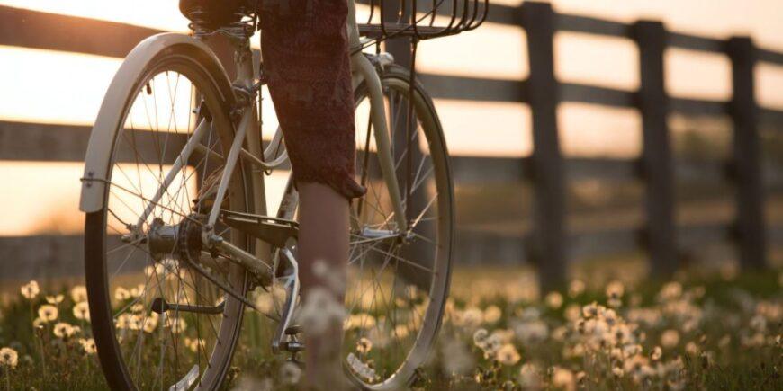 Fahrradträger für den sicheren Transport von Fahrrädern